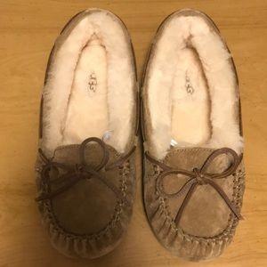 Dakota UGG Slippers